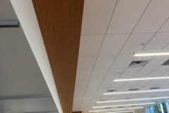 Ceiling and soffit wrap for a Jeep dealership using a custom 3M DiNoc woodgrain pattern.