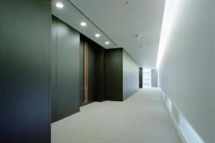 3m-dinoc-walls